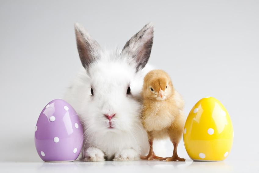 Życzenia na Wielkanoc - przykład