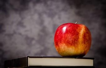 Sprawozdanie: Jak napisać sprawozdanie (etap szkolny)?
