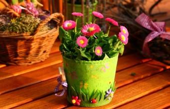 """Plan marketingowy kwiaciarni """"Kokietka"""" - przykład"""