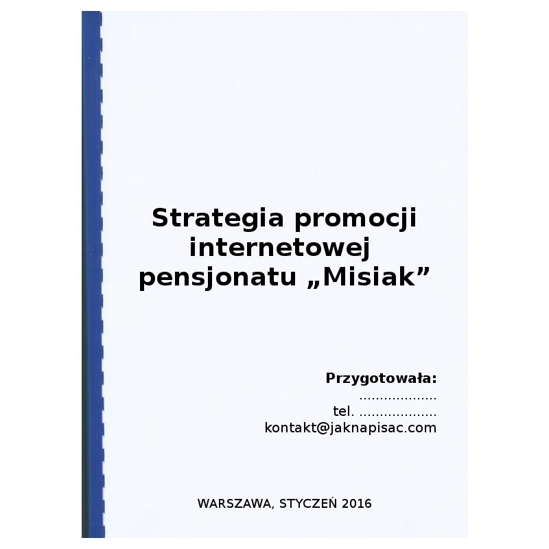 """Strategia promocji internetowej dla pensjonatu """"Misiak"""" - przykład"""