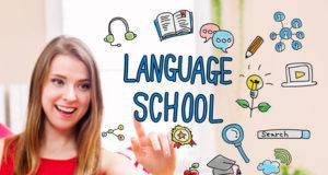 """Strategia promocji internetowej dla szkoły językowej """"Magellan"""""""