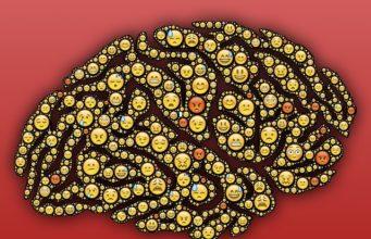 Nawet na wakacjach naukowcy objaśniają tajemnice mózgu