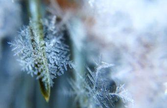 Metoda płatka śniegu w pisaniu powieści