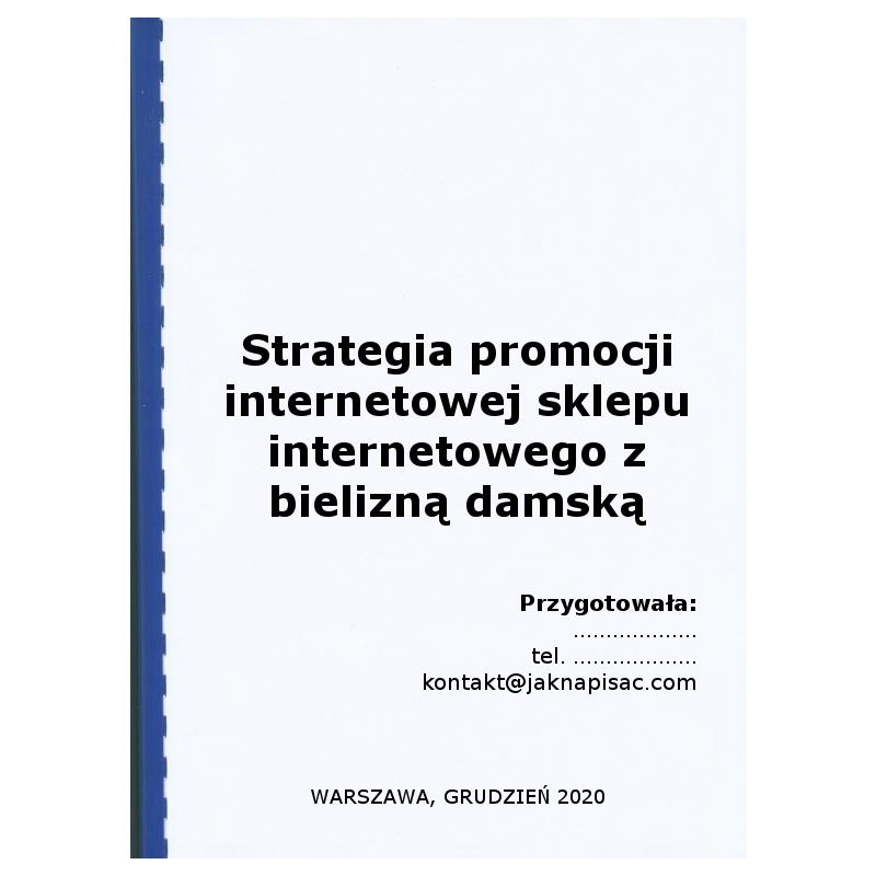 Strategia promocji internetowej sklepu internetowego z bielizną damską